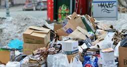 Преимущества и особенности вывоза мусора