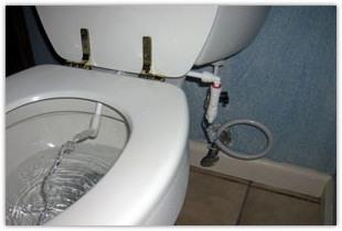 сантехника для современных туалетных комнат